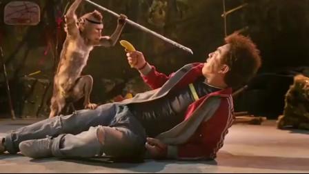 外星人上身猴子准备大开杀戒,结果却被一根香蕉打败,太搞笑了