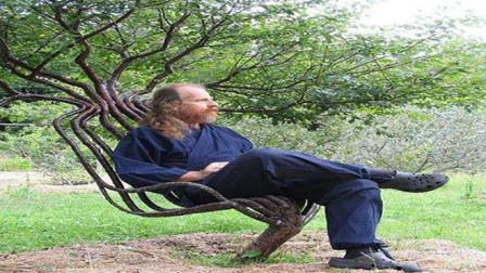 国外大叔种出椅子,十分独特,每把价格上万元供不应求