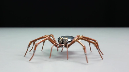 How to Make a Remote Controlled Spider Robot! ! DIY制作恐怖好玩的电动玩具蜘蛛
