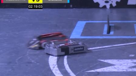 两台暴脾气机器人打架 网友:太过瘾!