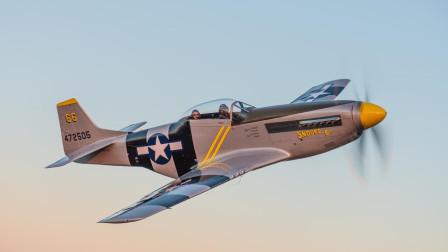 堪称二战活塞式战斗机的代表,被誉为历史第一战机的野马战斗机