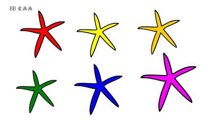 如何简画海星 然后涂上彩色