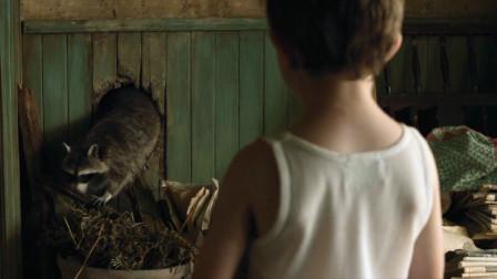 一部悲伤的恐怖片,弟弟看着洞口说有鬼,于是哥哥遮住了所有镜子