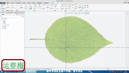 导入树叶图片,跟着叶子的图片形状画模型,简单!