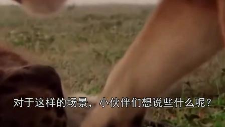 刚出生的角马遭到鬣狗攻击, 没想到狮子出手相救, 镜头拍下全过程