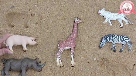 张猫猫与动物玩具乐园 一起来玩有趣的动物砂土拼图吧