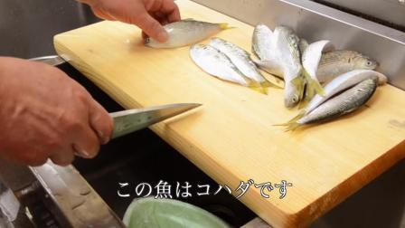 实拍日本寿司达人做腌制小银鱼寿司!