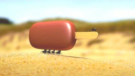 昆虫总动员:面对行军蚁的拦路,黑蚁们只好返回自己的城堡