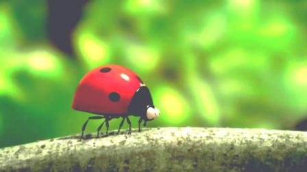 昆虫总动员:瓢虫竟然带着孩子来调戏蜘蛛!真是太大胆了