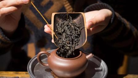 想喝传统、古法的乌龙茶?我们直接去乌龙茶之乡找到了它!