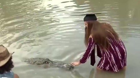 女子给鳄鱼喂食,没有任何防护装置,镜头记录全过程!