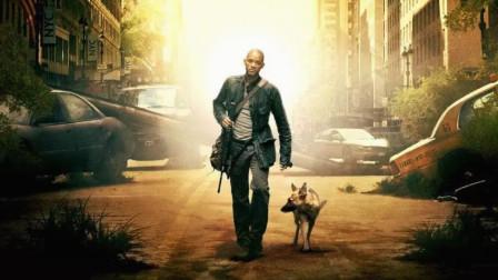 丧尸包围了整座城市,只有一人一狗活了下来,却只有白天才敢出门