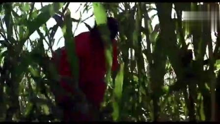 《红高粱》姜文巩俐经典片段,红高粱里的激情