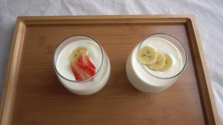 家里纯奶太多喝不动,教你用电饭煲自制酸奶,晚上做,早上就可以吃