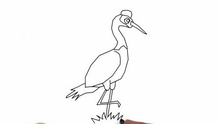怎样画漂亮的丹顶鹤简笔画