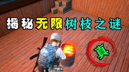 刺激战场:揭秘无限树枝之谜,饺子十一杀吃鸡,郎哥打脸!