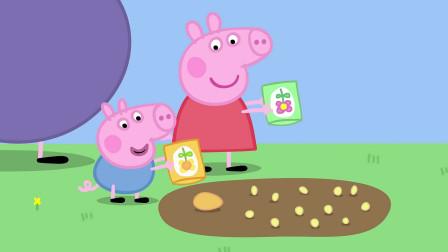 《小猪佩奇全集》属于小猪佩奇的花园,佩奇:我一定会成功的