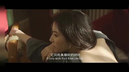 夜孔雀刘烨给刘亦菲背部纹身