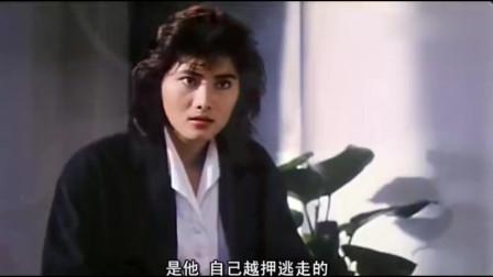 皇家师姐-功夫女神杨丽菁表弟被陷害,她拼相救!