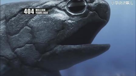 我们的祖先是由一条超级大鱼逼迫而呼吸空气进化出了鳃