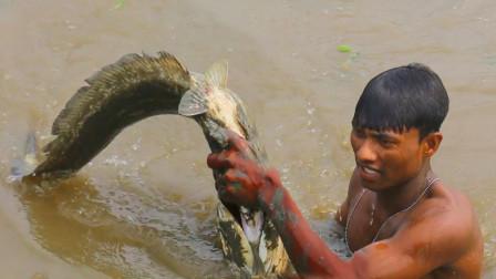 野外河里大鱼多难捕,农村小伙潜水下去抓,看看他抓到了啥鱼?