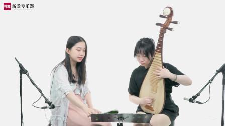 新爱琴从零开始学琵琶 第71课《大浪淘沙》学员示范(二)
