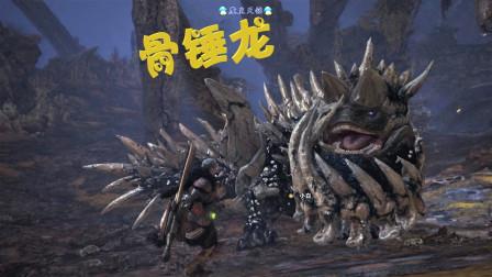 天铭 怪物猎人 世界 18 骨锤龙为粉身碎骨之战