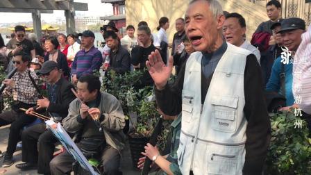 杭州七旬老人领唱《咱们的牛百岁》插曲,游客围观忘了逛