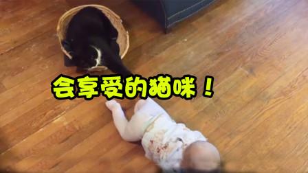 """暴躁的猫咪发火,逮着小主人就是一顿""""喵星拳"""",直接把他打哭!"""