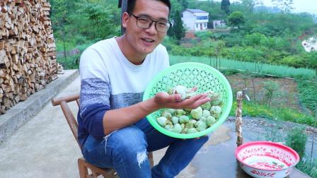 农村小伙用茶树上的果子做了一款黑暗料理却广受家人好评