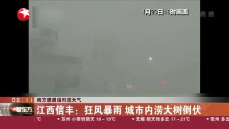 视频 南方遭遇强对流天气: 江西信丰--狂风暴雨 城市内涝大树倒伏