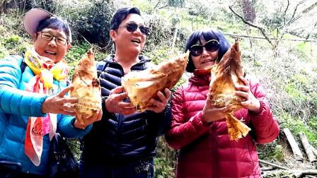 自驾游-安徽黟县木坑竹海