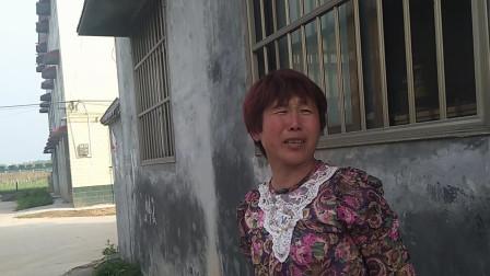 河南新农村建设统一规划,别墅三层需要多少钱?