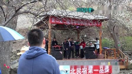 2019营口第二届百年古树梨花艺术节