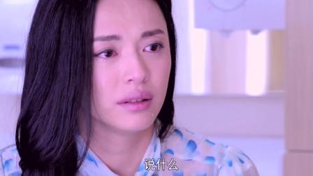 离婚律师:波叔深情表白我爱你,这气氛绝好,姚晨哭成了泪人!