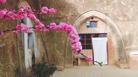 甘肃庆阳黄土高原上的窑洞人家 如今还在住人的已经很少了