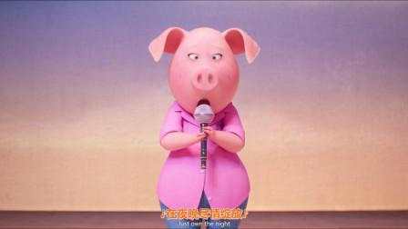 欢乐好声音:猪妈唱的这首歌,喜欢听欧美歌曲的一定都听过!