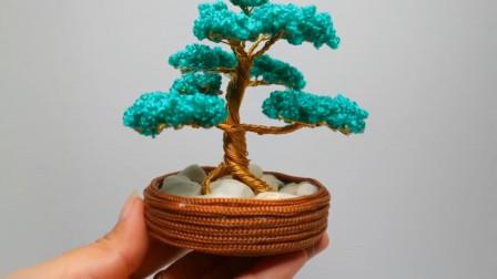 生活手工小妙招,常青树盆栽的制作方法,用来装饰房间非常漂亮
