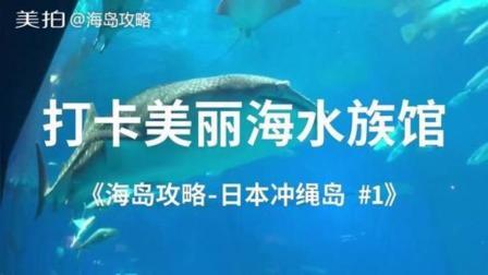 打卡美丽海水族馆《海岛攻略-日本冲绳岛》