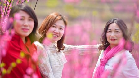 美在长岭-寿山生态园