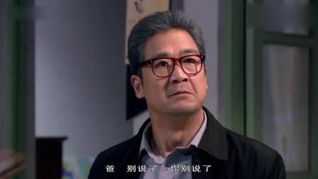 金婚:苏戈欲与南方离婚,佟志痛斥苏戈,苏戈无奈说出真相