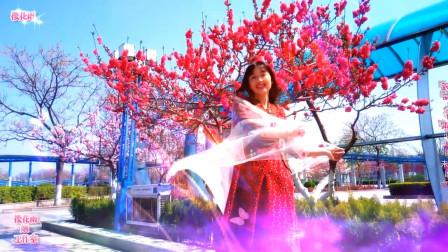 创意音乐视频《桃花仙》此景只应天上有~人间难得几回闻 《精华珍藏版》《79部》