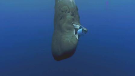 蓝色星球:痛心!鲸鱼吞吃塑料桶被卡住,海洋塑料污染触目惊心!