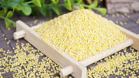 常吃能健脾益肾的小米好处多多,但应注意这几点禁忌