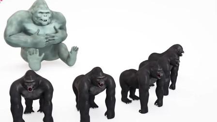 幼儿色彩启蒙:3D猩猩妈妈教小猩猩吃冰淇淋