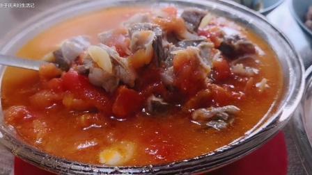 午餐, 西红柿炖牛腩, 炖豆角, 水果酸奶, 盐炒花生米