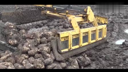 看完这种土豆装车方式, 才知道有多先进!