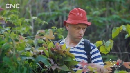 二十四节气大型体验式纪录片《四季中国》第七集:立夏(英文版)