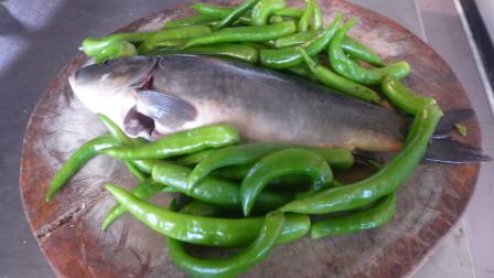 这个季节做鱼别放豆瓣泡辣椒,用半斤青椒火上一烧,味道巴适