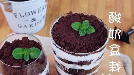 酸奶盆栽是一道创意十足的甜品,用奥利奥饼干和酸奶作盆栽的泥土上面再插一朵小薄荷,看上去绿意盎然